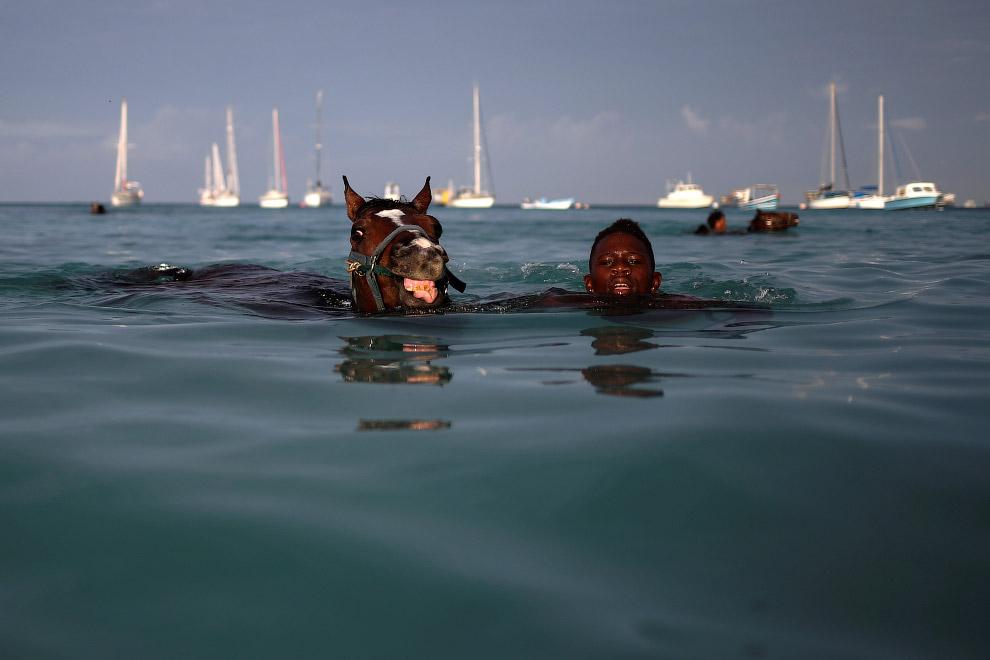 6. Взаимоприятное времяпрепровождение. (Фото Adrees Latif | Reuters):