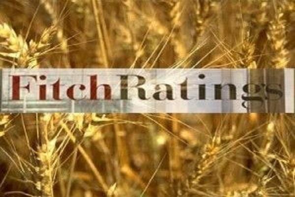 Fitch повысило кредитные рейтинги украинской столицы