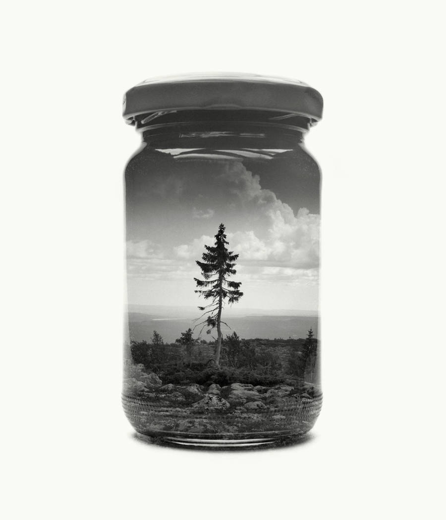 Poetic Black and White Landscapes in Glass Pots (11 pics)
