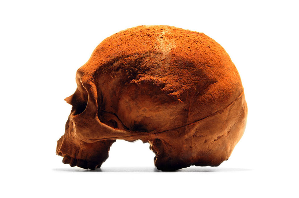 Edible Anatomically Accurate Chocolate Human Skulls