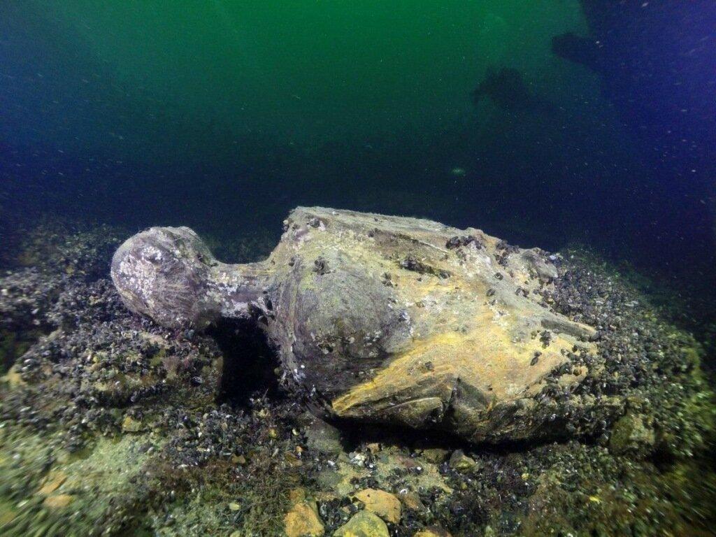 Дайвер нашел сотни бутылок с затонувшего судна apxeo.