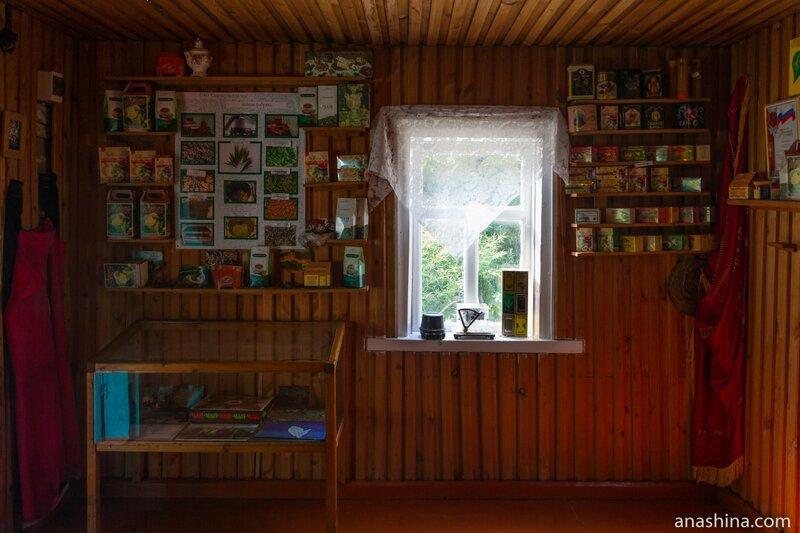 Дом Кошмана, Солохаул
