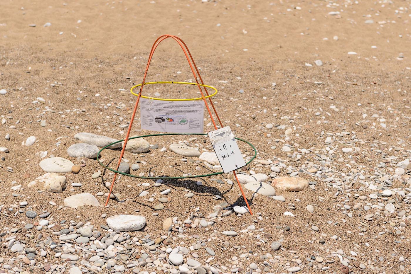 Фото 25. Пляж CiraliOlymposBeach объявлен национальным парком, чтобы защитить кладки морских черепах (Логгерхед, каретта). Места, где отложены яйца, обозначены такими вот пирамидками из проволоки. 1/500, 0.67, 4.5, 100, 60.