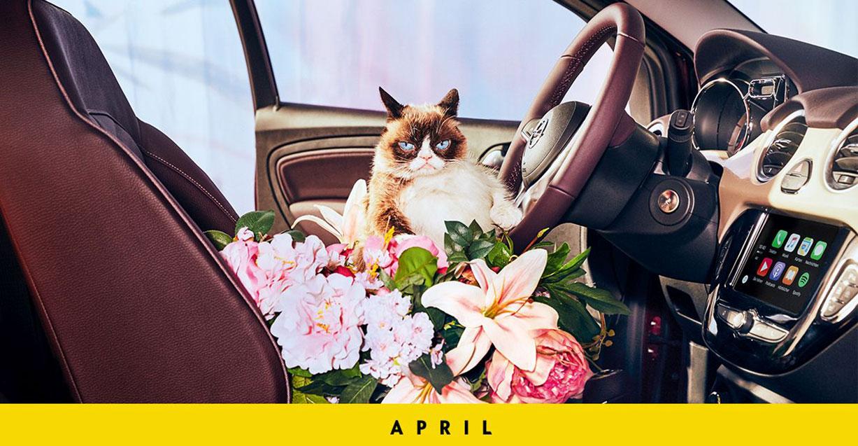 Сердитый кот и Джорджия Мэй Джаггер / Georgia May Jagger & Grumpy Cat by Ellen Von Unwerth - Opel Calendar 2017