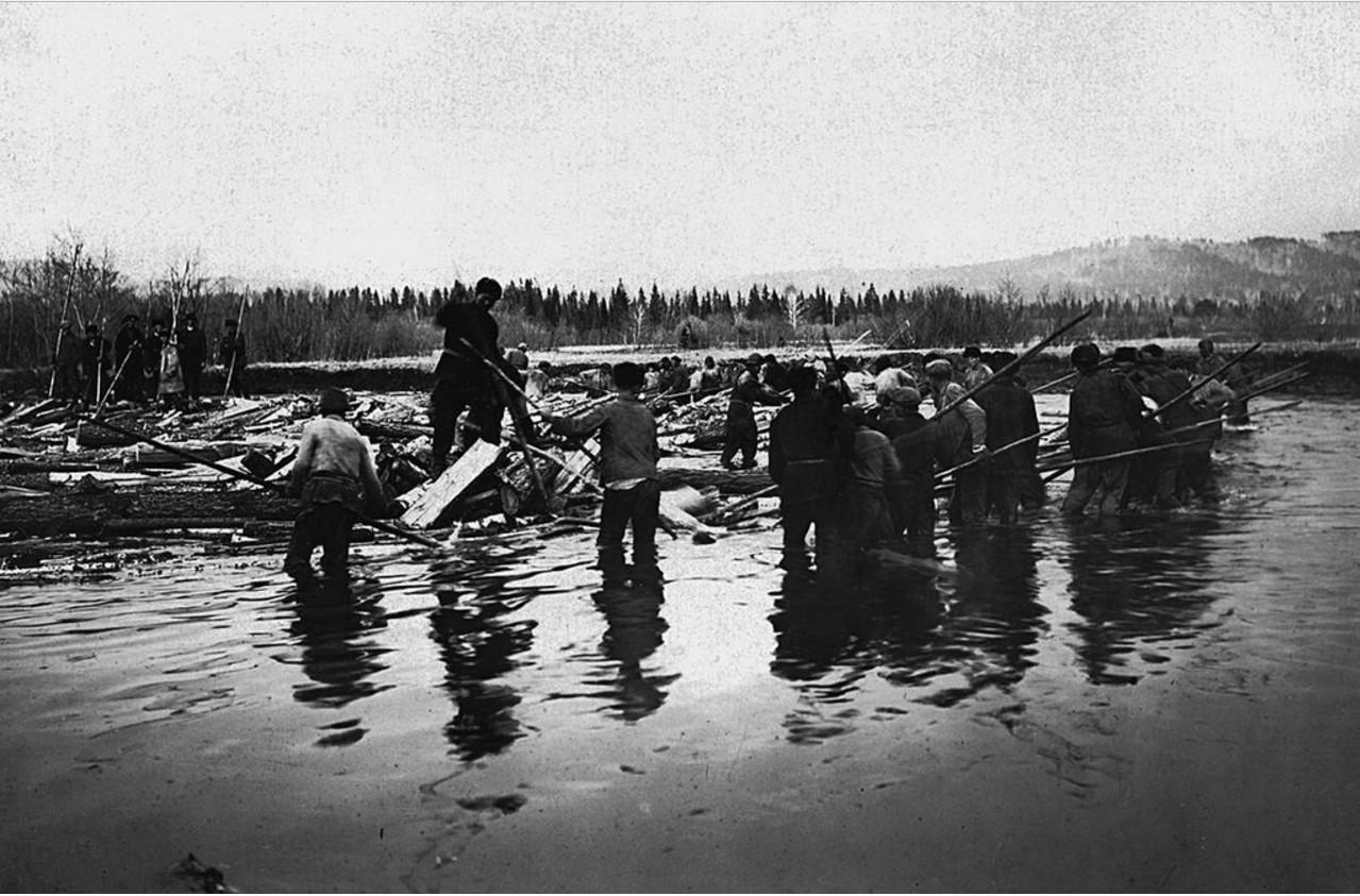 Лесосплав на реках Ай и Тесьма. Распускание затора бревен и дров. Горные заводы Челябинской области продолжали работать на древесном угле в 1920-1930-е гг. Рубка дров достигала 10 тыс. м3 в день.