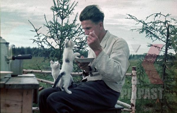 stock-photo-german-luftwaffe-flak-officer-feeding-cat-pet-animal-coffee-wood-chair-russia-1941-3-flak-abt-701--8036.jpg
