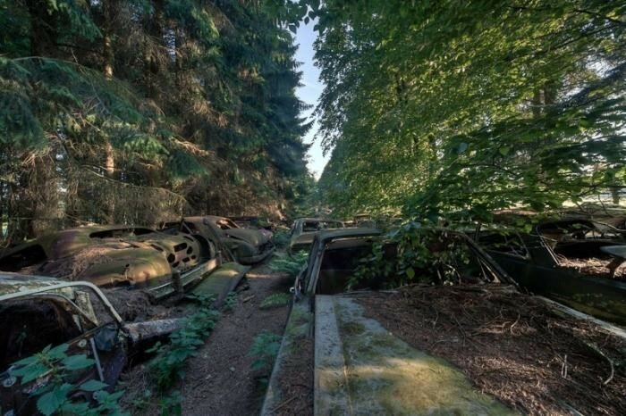 Лесное кладбище автомобилей в Бельгии (редкие фотографии)