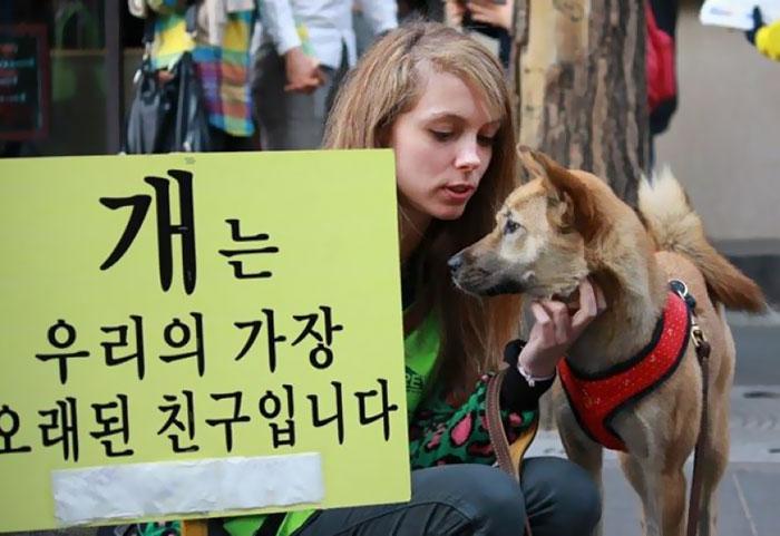 Чжан Ин-ёнг, представитель Корейской ассоциации благополучия животных, прокомментировал приятную нов
