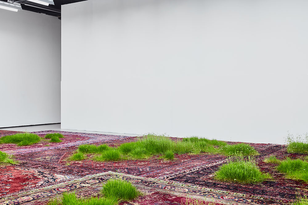 A Temporary Lawn Planted Amongst a Patchwork of Persian Rugs (9 pics)