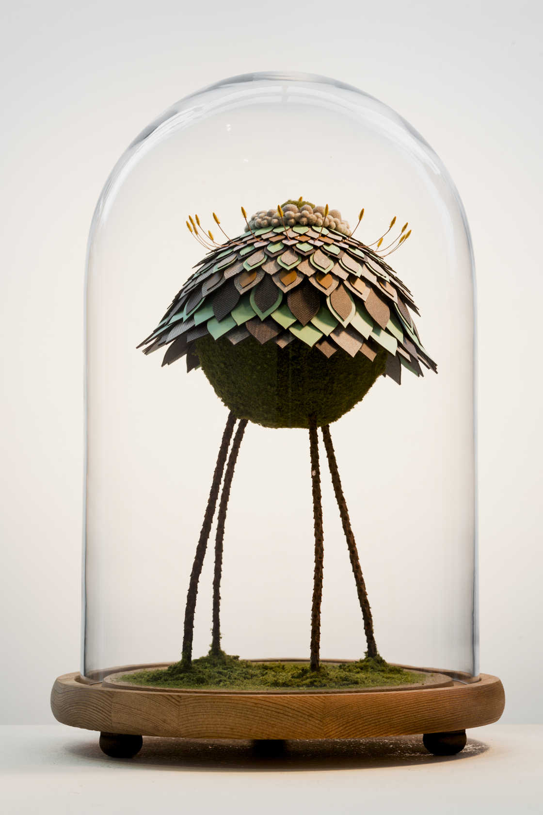 The strange feathered creatures of Noreen Loh Hui Miun