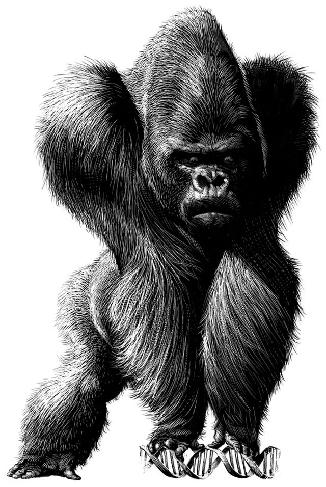 Great Animal Drawings by Ricardo Martinez