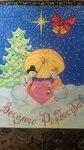 """Лесина Алёна (рук. Грацианская Анастасия Игоревна) - """"Рождество"""""""