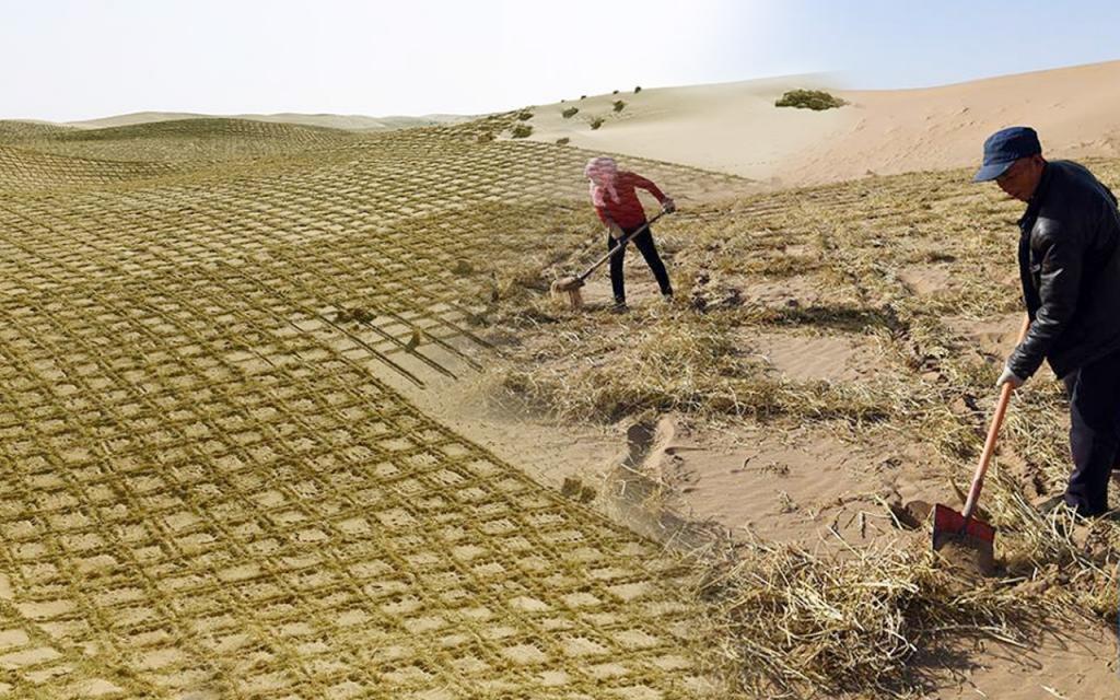 сколько процентов занимают песчаные пустыни оформить кредит с черной кредитной историей