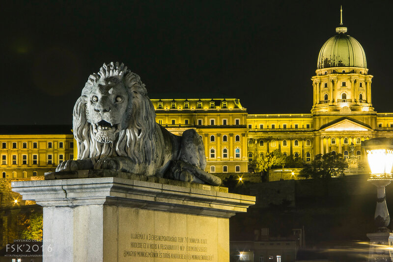 night_budapest-14.jpg