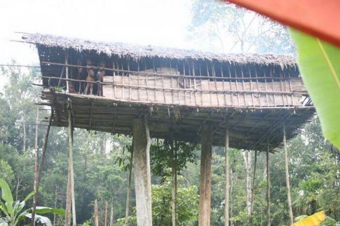 Еще одно племя папуасов короваи удивляют своим местом жительства. Они строят свои дома прямо на