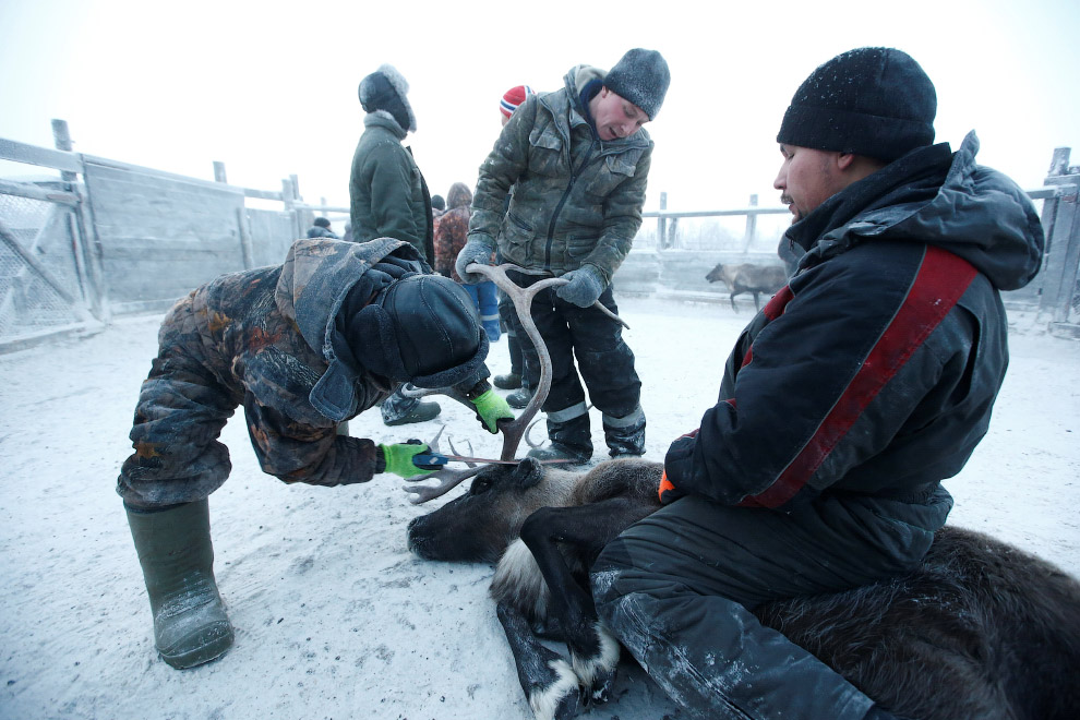 8. (Фото Sergei Karpukhin | Reuters):