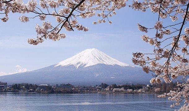 Возле подножия горы Фудзияма существует то, что называют