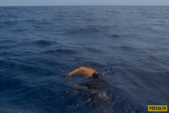 Утонувшие в море, 24 мая 2017.