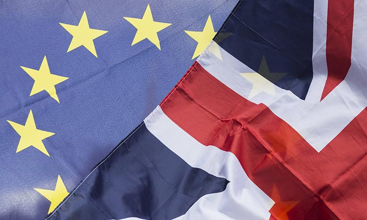 ЕПодобрил резолюцию поусловиям Brexit