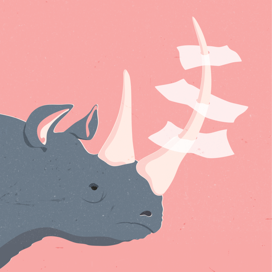 Beautiful and Touching Animals Illustrations