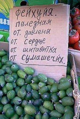 https://img-fotki.yandex.ru/get/195786/7416871.1be/0_90acf_c9926f21_orig.jpg