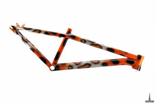 patagonia-leopard.jpg