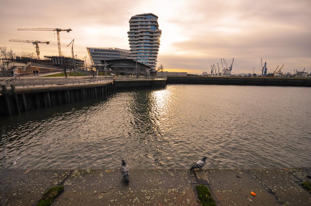 HafenCity2017-(14).jpg