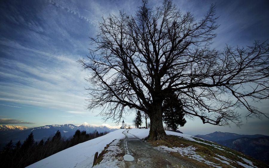 Пейзажи зимы рабочий стол