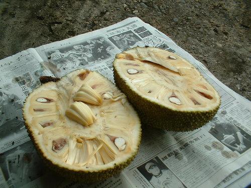 Jackfruit opened - �������� ������