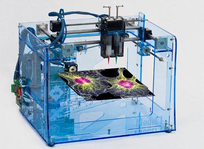 3. Стволовые клетки 3D-моделирование широко применяется в медицине. Именно с его помощью «печатаются