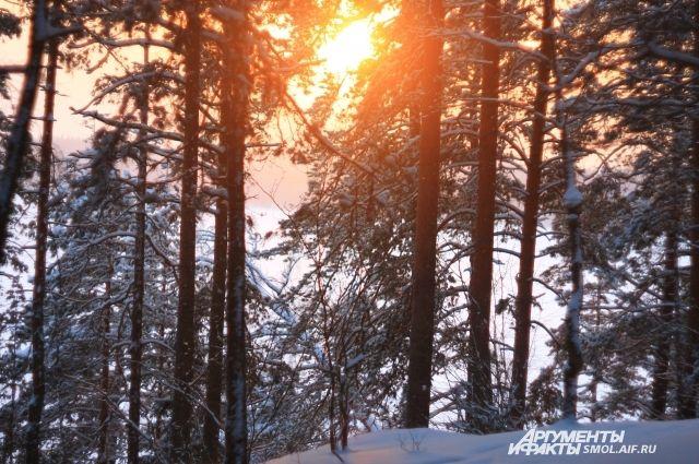 ВТатарстане завтра потеплеет доминус 3— Гидрометцентр