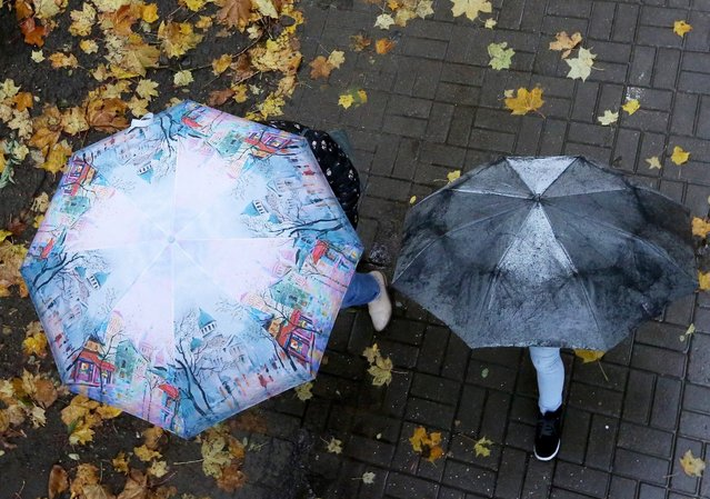 A couple with a child walks under an umbrella on seasonal colored leaves, as it rains in the central