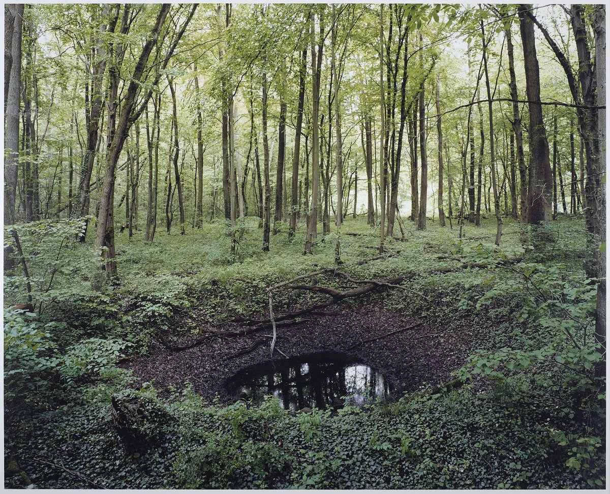 Haunting Photos of the German Countryside Reveal Scars Left from WWII Bombs