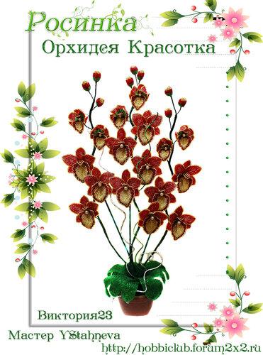 """Галерея работ творческой мастерской """"Орхидея Красотка"""" 0_12ea29_23918265_L"""