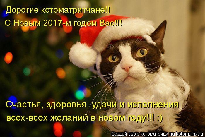 Большая новогодняя котоматрица