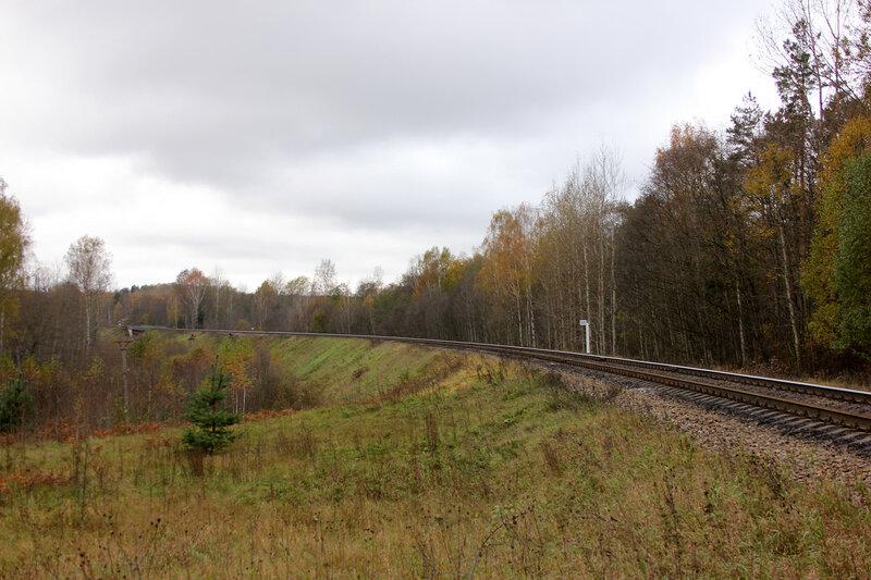 Тут должен быть поезд. Перегон Гарнея - Посинь, 631-й километр Рижского направления
