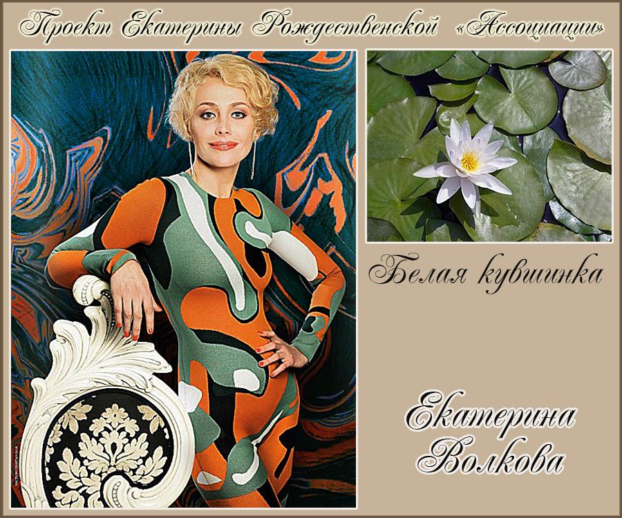 https://img-fotki.yandex.ru/get/195853/92936793.47/0_16ebfd_b1a2f80b_orig.jpg
