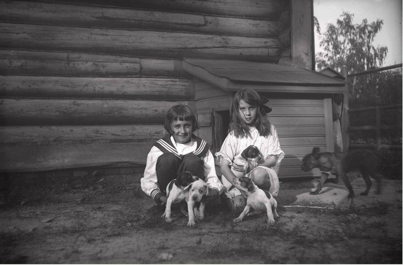 1910. Усадьба Солнцево на  берегу реки Клязьмы. Игорь и Кира Востряковы
