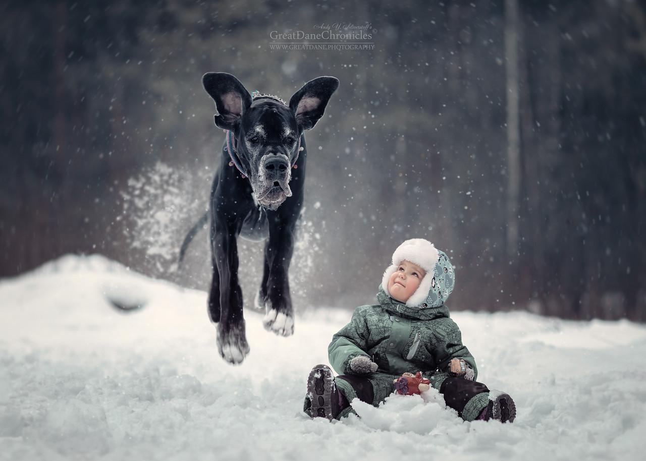 Детишки и их четвероногие друзья на зимней прогулке