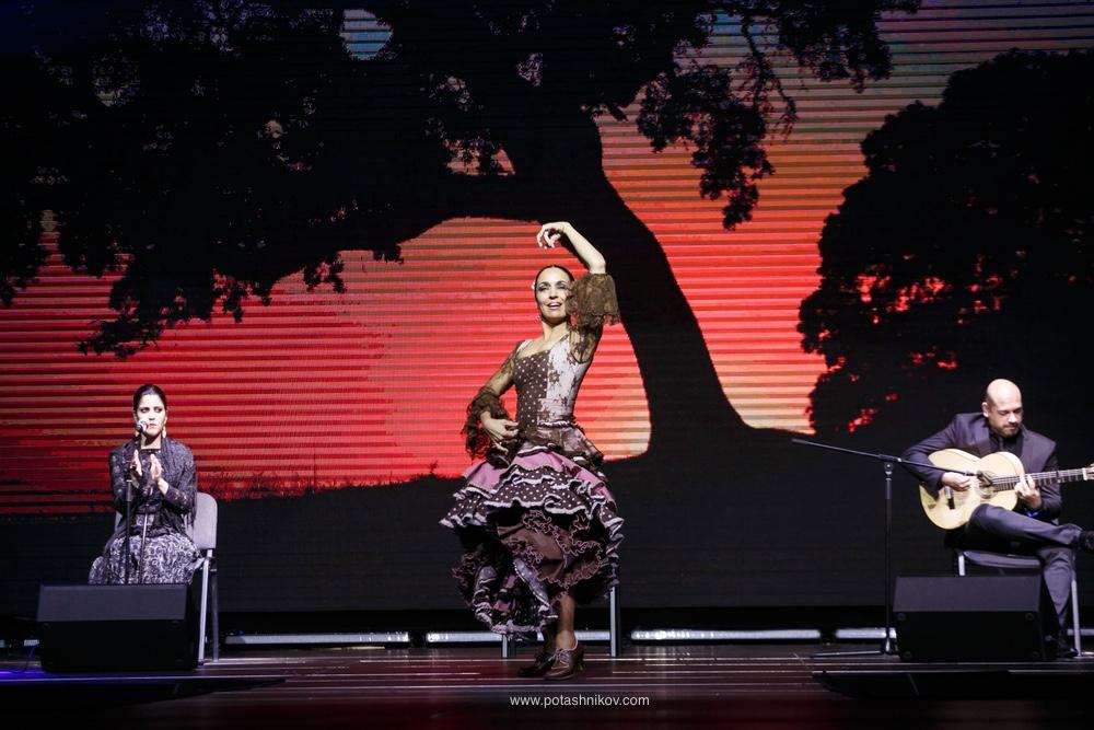 Фотографии с вечера Фламенко в Минске. Гости из Испании и выступление Урсулы Морено