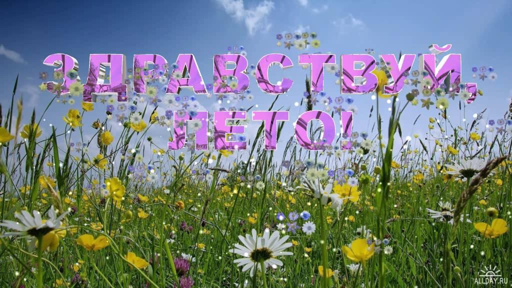 Здравствуй, лето! Поле цветов открытки фото рисунки картинки поздравления