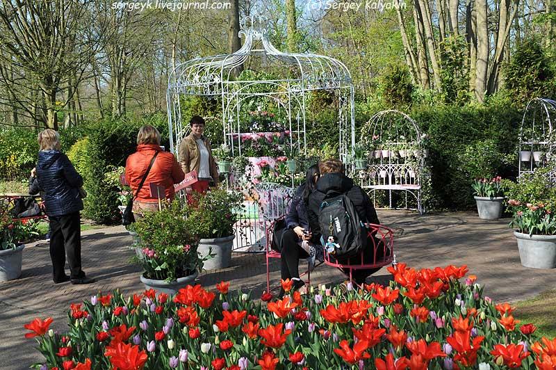Inspirational Garden 7 (2).JPG