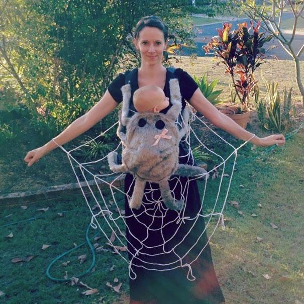 Паучок и паутина.