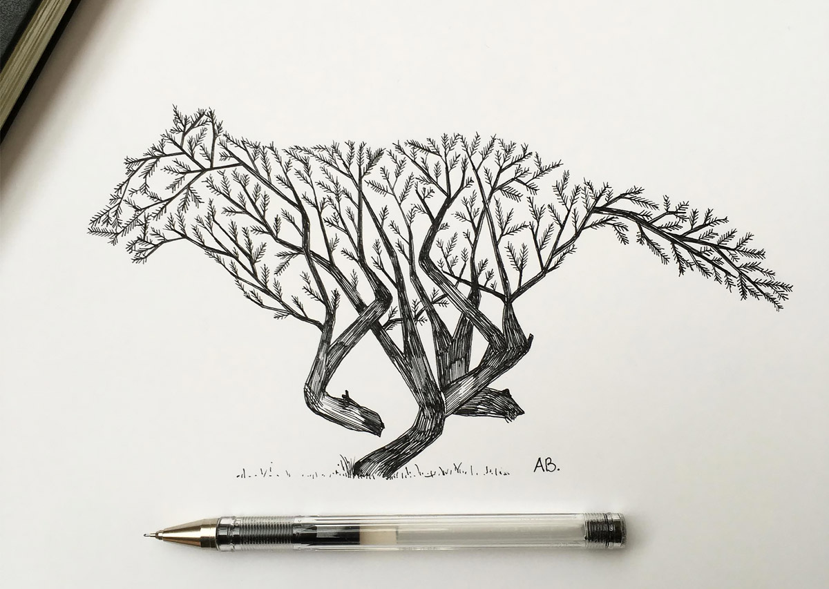 Hand Drawn Animal Illustrations by Alfred Basha (13 pics)
