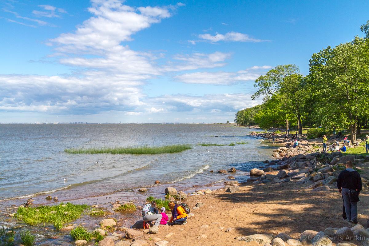 побережье финского залива фото 1