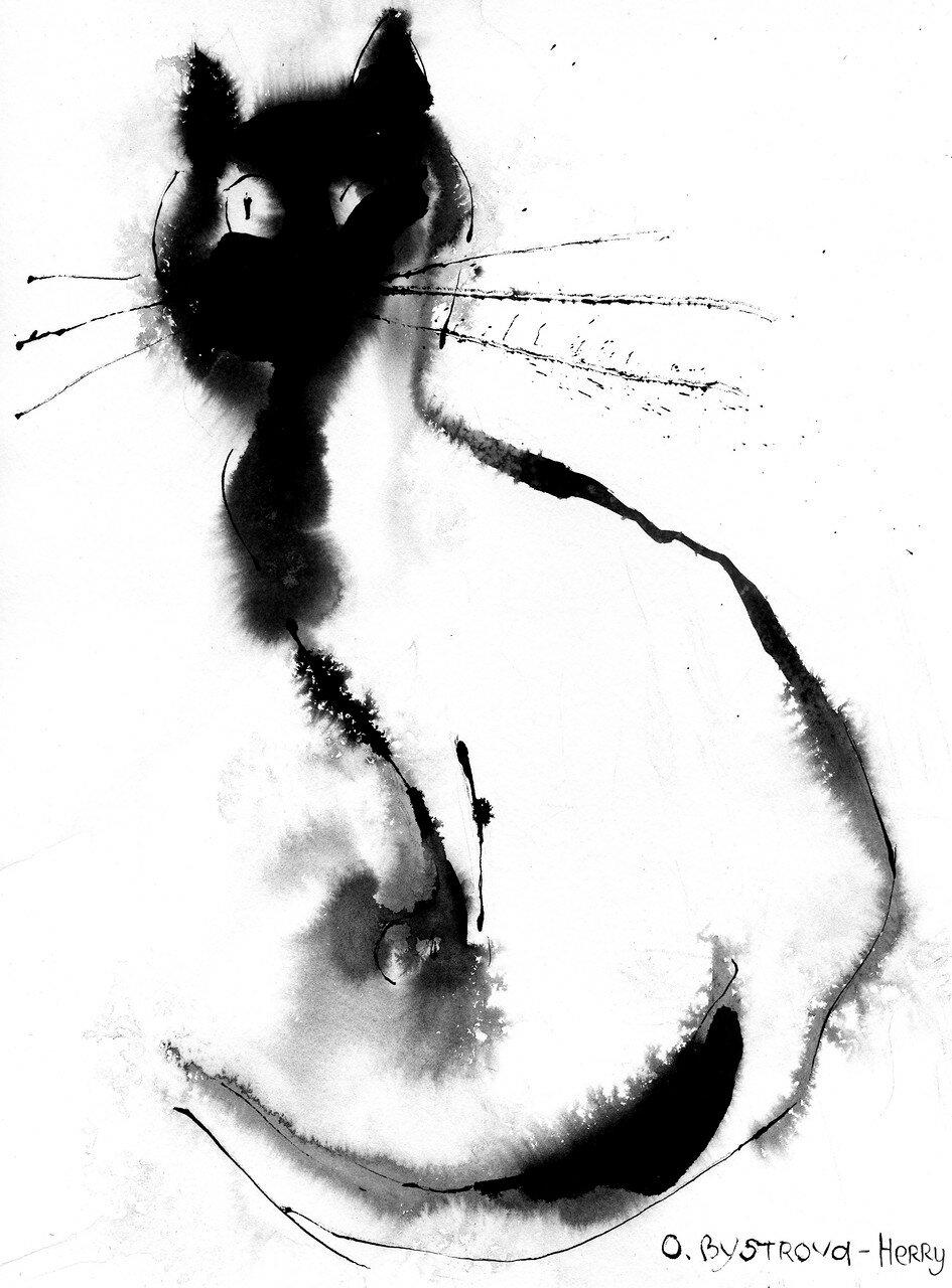 14 0519 Cat2