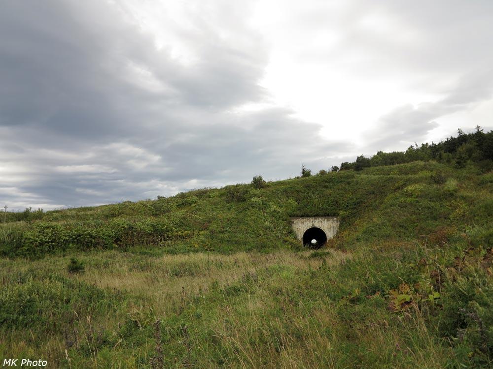 Южный портал тоннеля 20
