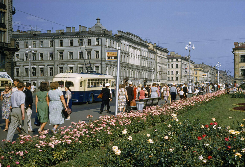 1959 Nevsky by B. Anthony Stewart4.jpg