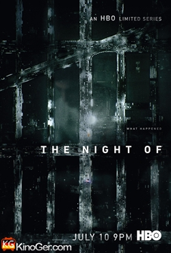 The Night Of Staffel 1 (2016)