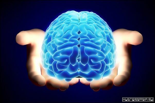 Нейробика и работа мозга - 10 странных упражнений для мозга, которые помогут поумнеть